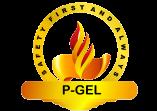 Pritaz Global Energy Limited